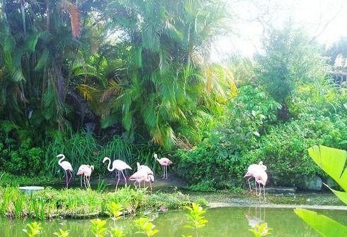 台北动物园(图片来源:中华网)