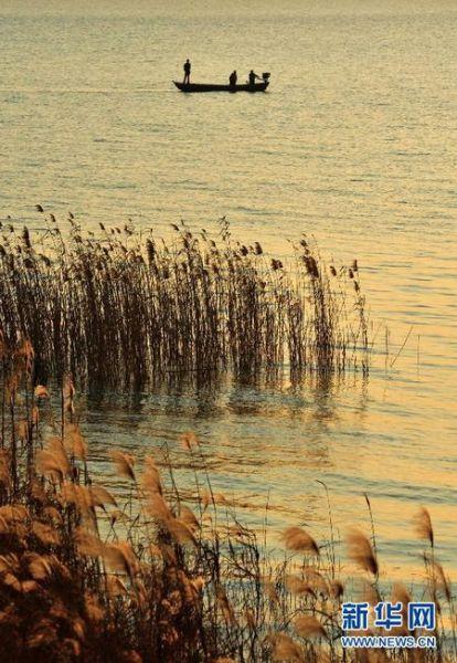 安徽巢湖湿地落日余晖下的亮丽风景