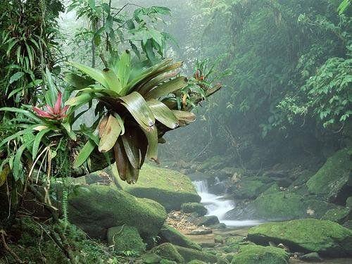 拉丁美洲八大度假胜地 开启追梦之旅