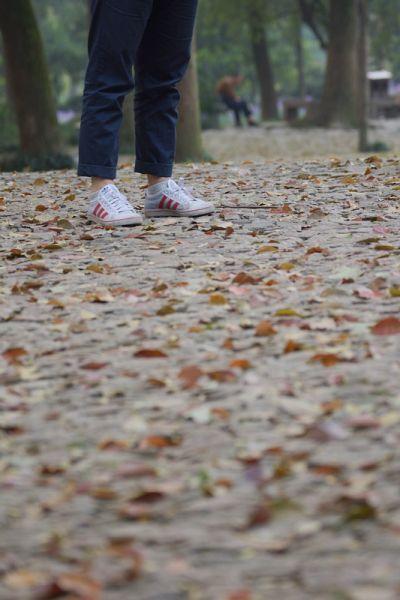 站在铺满落叶的虎丘,仿佛在苏州的历史中游走