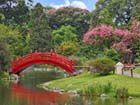 别具特色的日本风格园林建筑
