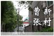 曹张新村:老新村里还保留着林荫道 为路人遮阴蔽日
