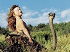 """""""小野人""""女孩与动物的十年生活"""