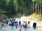 竹海风景区