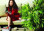 倪妮森女风大片与植物和谐相处