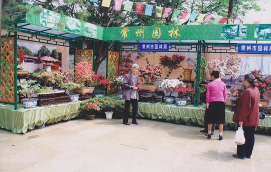 游客在展示区欣赏杜鹃花