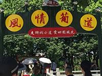 来江阴璜土镇吃葡萄吧!