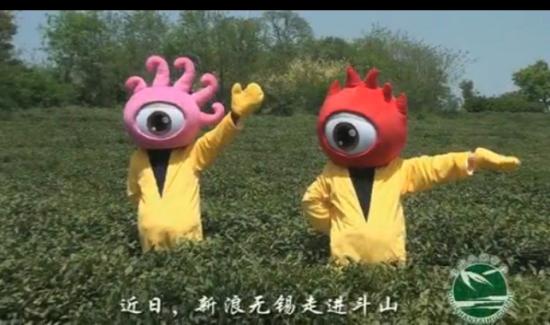 视频:茗香斗山 太湖翠竹