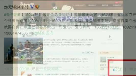 视频:新浪无锡微博聚力卖青鱼回顾