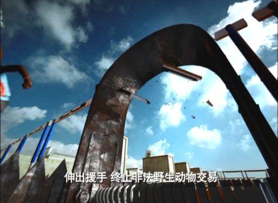 视频:公益广告奥运冠军系列(子弹篇)